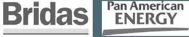 bridas-panamerican-energy-logo