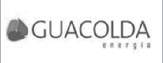 guacolda-logo