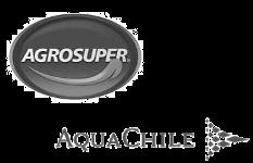 Agrosuper + AquaChile